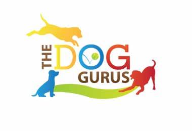 the-dog-gurus